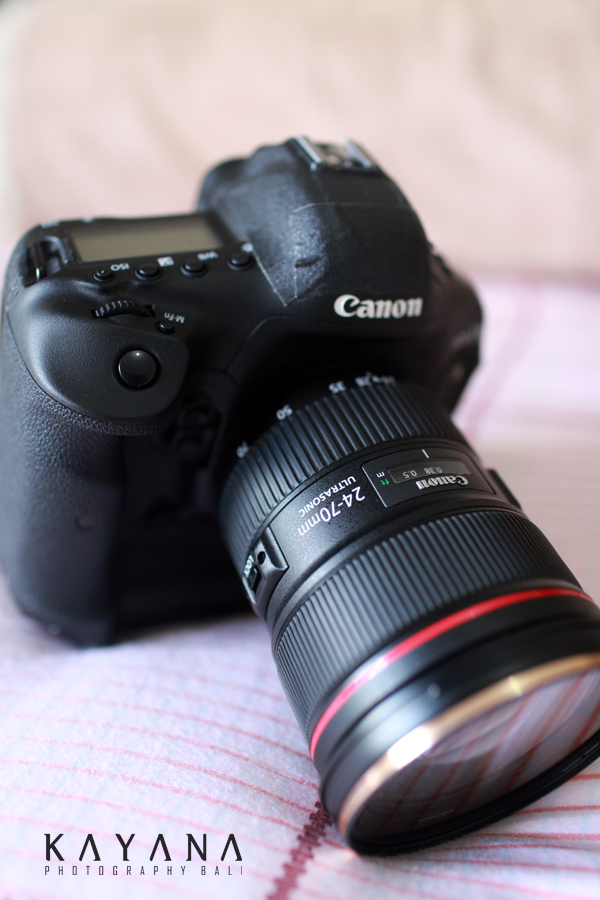 Canon 1Dx Camera and Canon 24-70mm f2.8 II L Lens